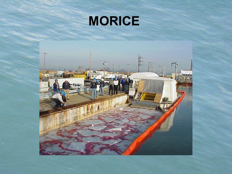 . MORICE