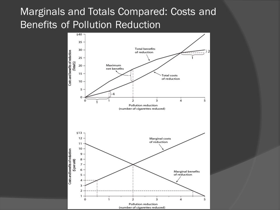 Marginals and Totals Compared: Costs and Benefits of Pollution Reduction