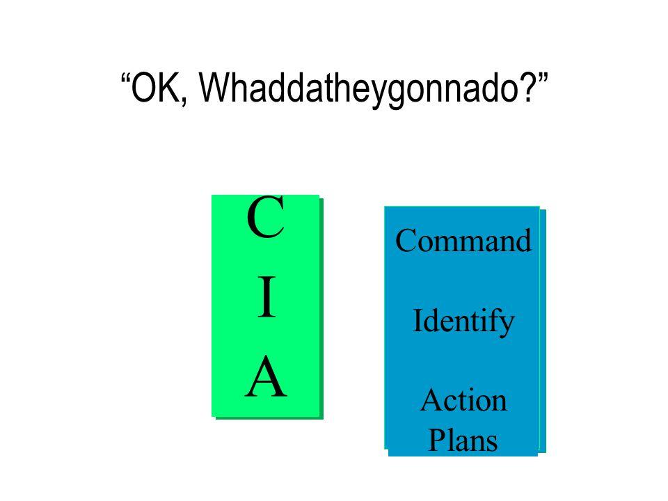 OK, Whaddatheygonnado CIACIA Command Identify Action Plans
