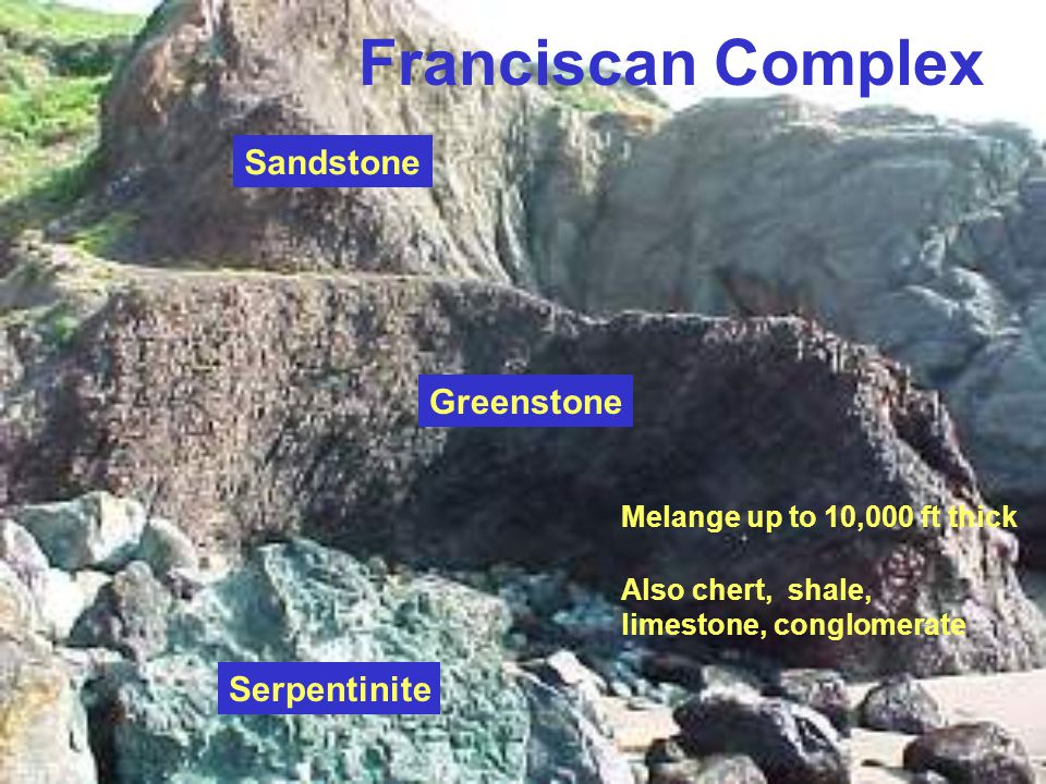 Depositional Environment Most likely a low latitude marine environment: –marine fossils in some clastic rocks, Radiolaria in chert –highly fractured, interbedded greenstones (rapid cooling of hot lava) Conglomerate and massive graywacke beds created by turbidity currents –further evidence: shale layers between graded beds, small scale current bedding, ripple marks Most likely a low latitude marine environment: –marine fossils in some clastic rocks, Radiolaria in chert –highly fractured, interbedded greenstones (rapid cooling of hot lava) Conglomerate and massive graywacke beds created by turbidity currents –further evidence: shale layers between graded beds, small scale current bedding, ripple marks