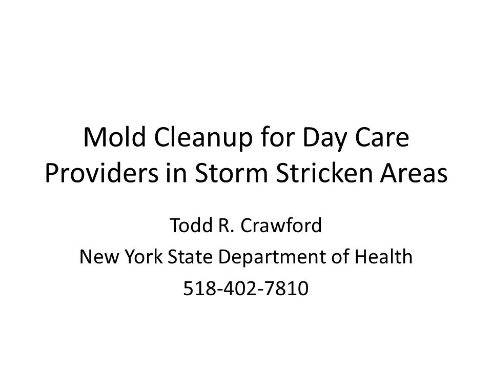 Mold Cleanup for Day Care Providers in Storm Stricken Areas Todd R.