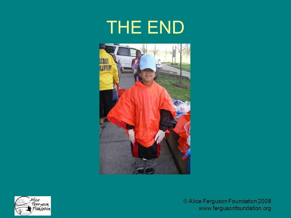 © Alice Ferguson Foundation 2008 www.fergusonfoundation.org THE END
