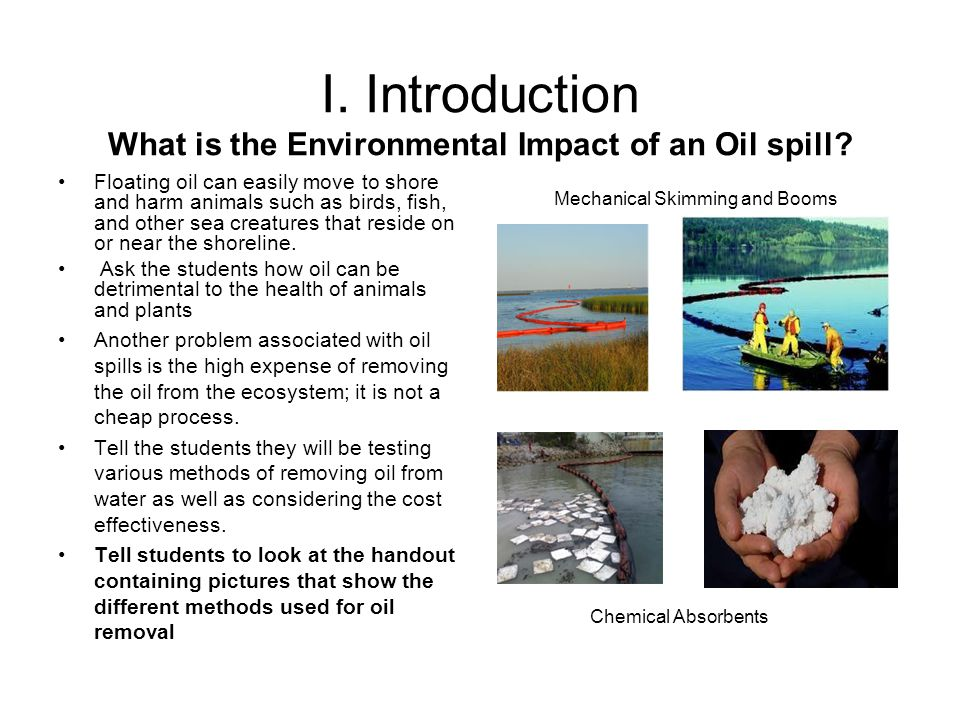 I. Introduction What is the Environmental Impact of an Oil spill.