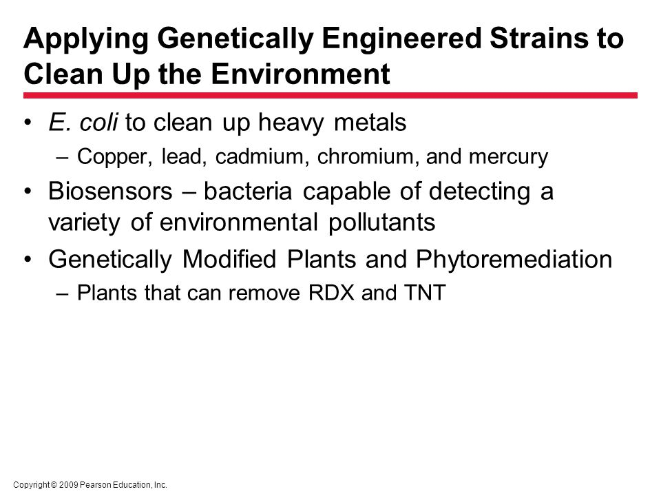 Copyright © 2009 Pearson Education, Inc. Applying Genetically Engineered Strains to Clean Up the Environment E. coli to clean up heavy metals –Copper,
