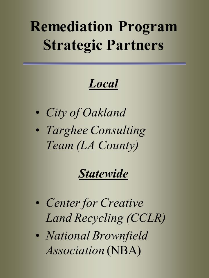 Remediation Program Strategic Partners Local City of Oakland Targhee Consulting Team (LA County) Statewide Center for Creative Land Recycling (CCLR) National Brownfield Association (NBA)