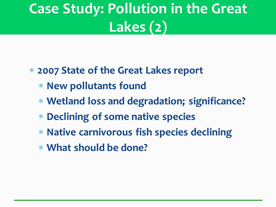  2007 State of the Great Lakes report  New pollutants found  Wetland loss and degradation; significance.