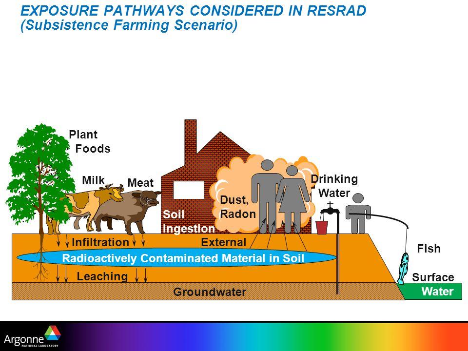 EXPOSURE PATHWAYS CONSIDERED IN RESRAD (Subsistence Farming Scenario) Dust, Radon Drinking Water Fish Plant Foods Meat Milk Radioactively Contaminated