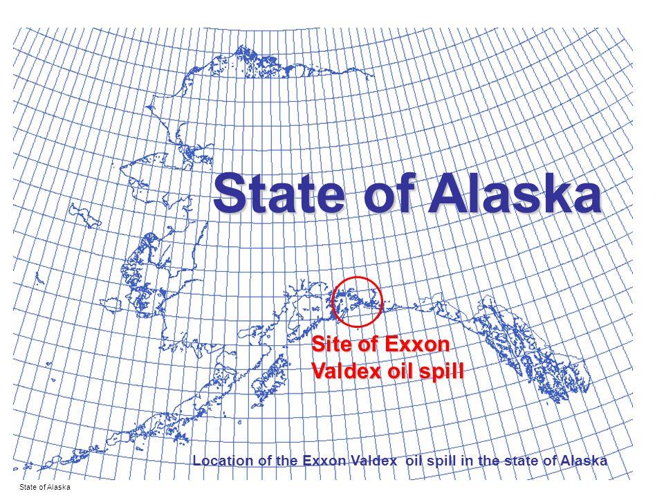 State of Alaska Site of Exxon Valdex oil spill State of Alaska Location of the Exxon Valdex oil spill in the state of Alaska