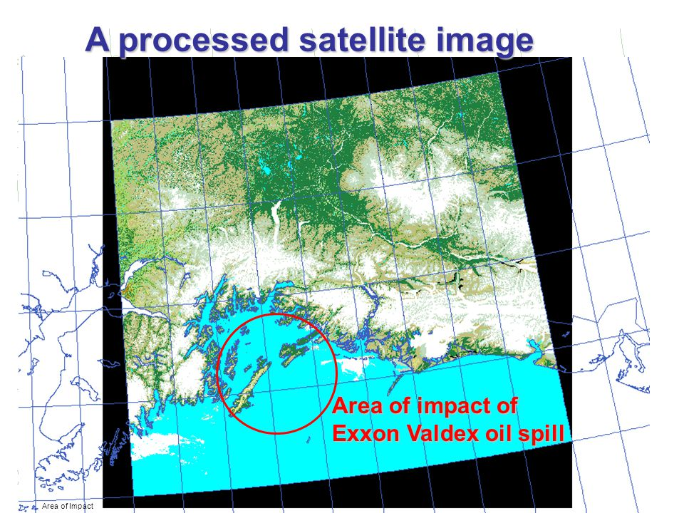 A processed satellite image Area of impact of Exxon Valdex oil spill Area of Impact