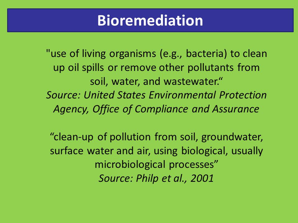 Bioremediation relies largely on the enzymatic activities of living organisms, usually microbes, to catalyze the destruction of pollutants or their transformation to less harmful forms.