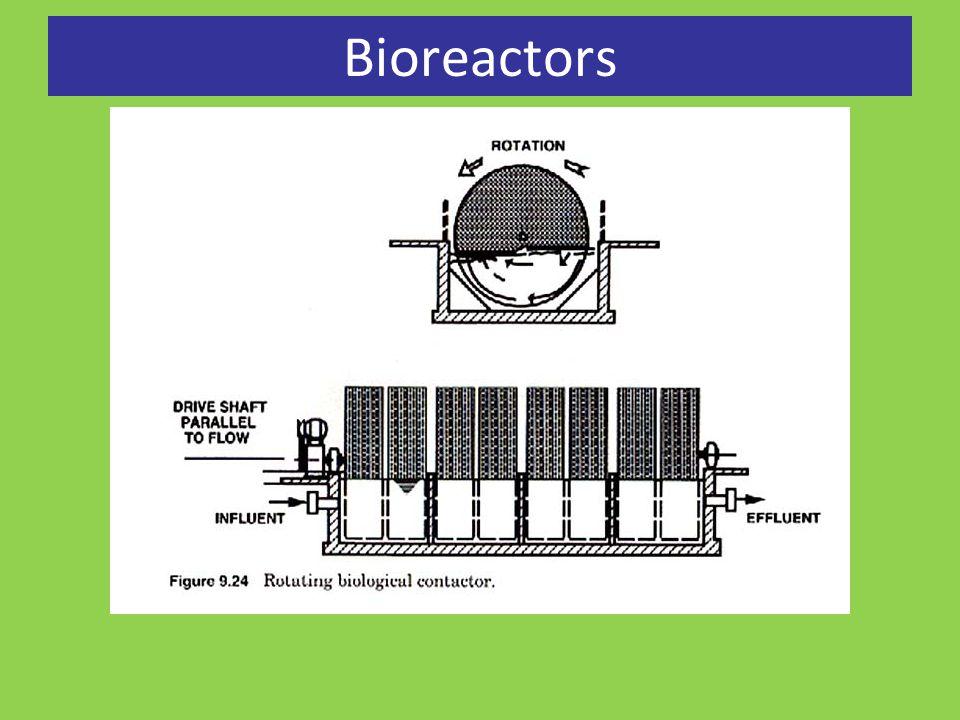 Bioaugmentation vs.
