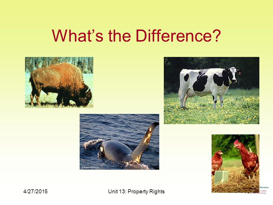 4/27/2015Unit 13: Property Rights16 What's the Difference
