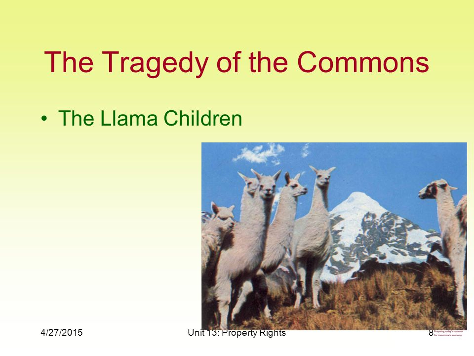 4/27/2015Unit 13: Property Rights8 The Tragedy of the Commons The Llama Children