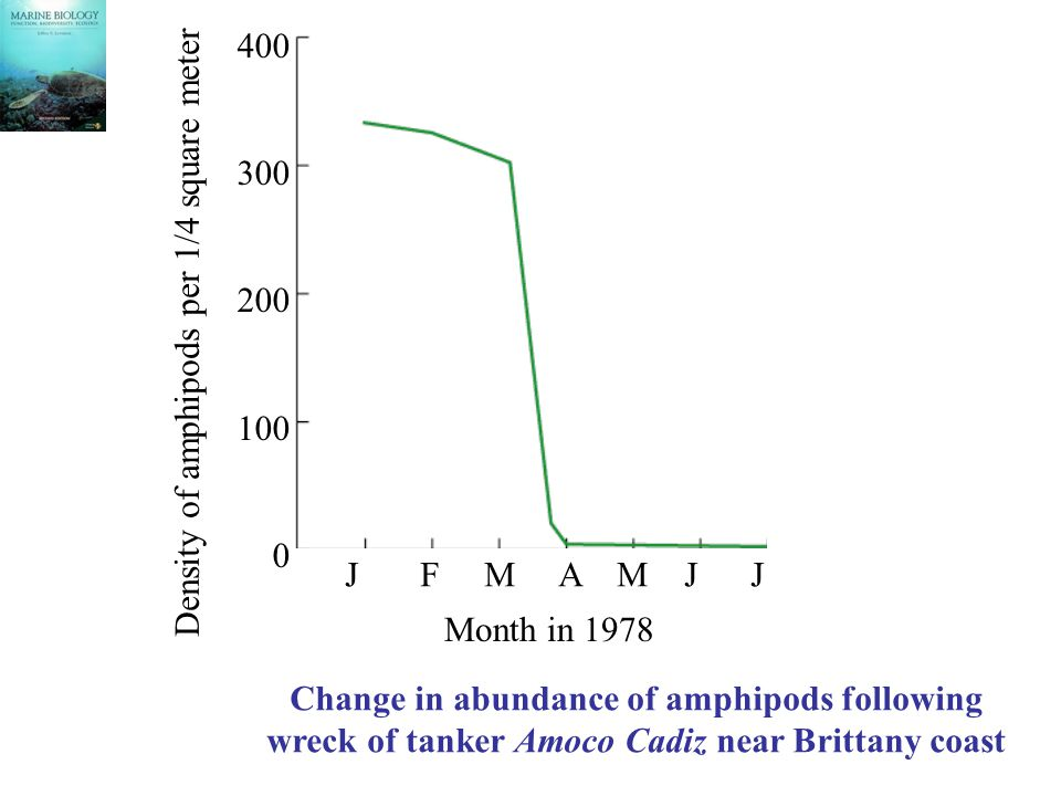 400 300 200 100 0 J F M A M J J Month in 1978 Density of amphipods per 1/4 square meter Change in abundance of amphipods following wreck of tanker Amoco Cadiz near Brittany coast