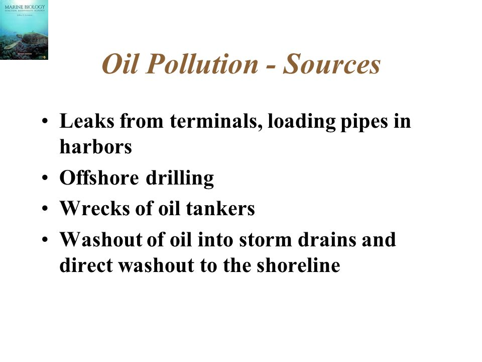Oil Pollution - Sources Leaks from terminals, loading pipes in harbors Offshore drilling Wrecks of oil tankers Washout of oil into storm drains and direct washout to the shoreline