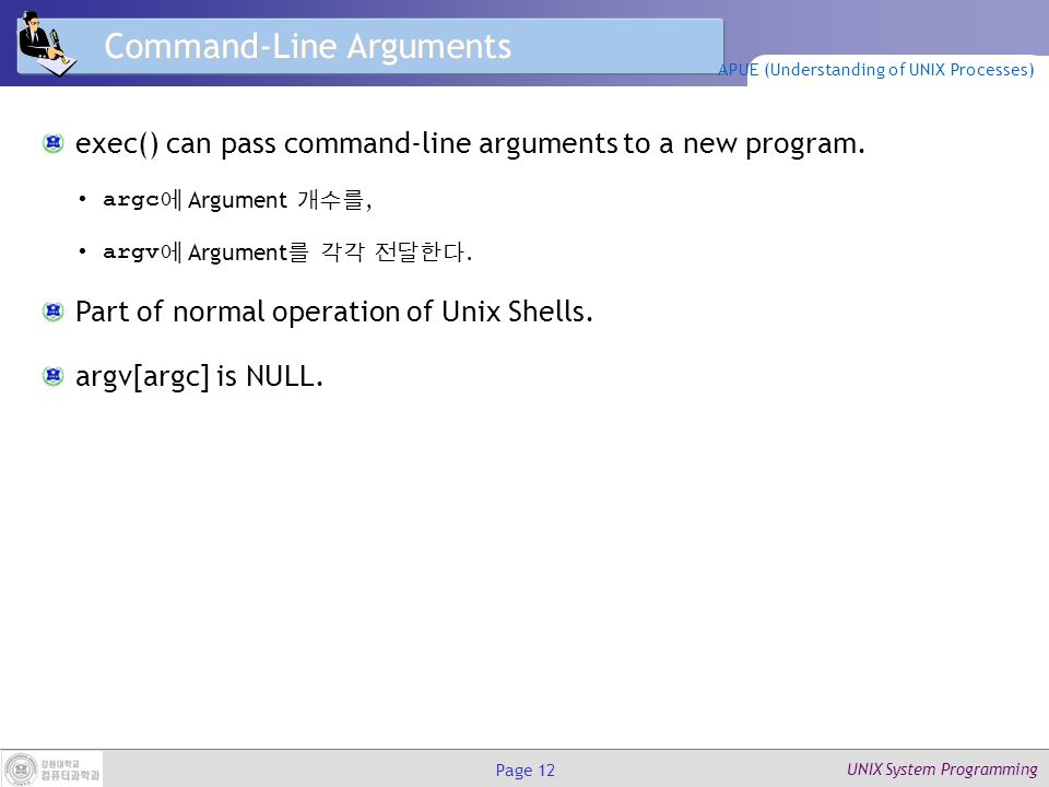 UNIX System Programming Page 12 Command-Line Arguments exec() can pass command-line arguments to a new program.