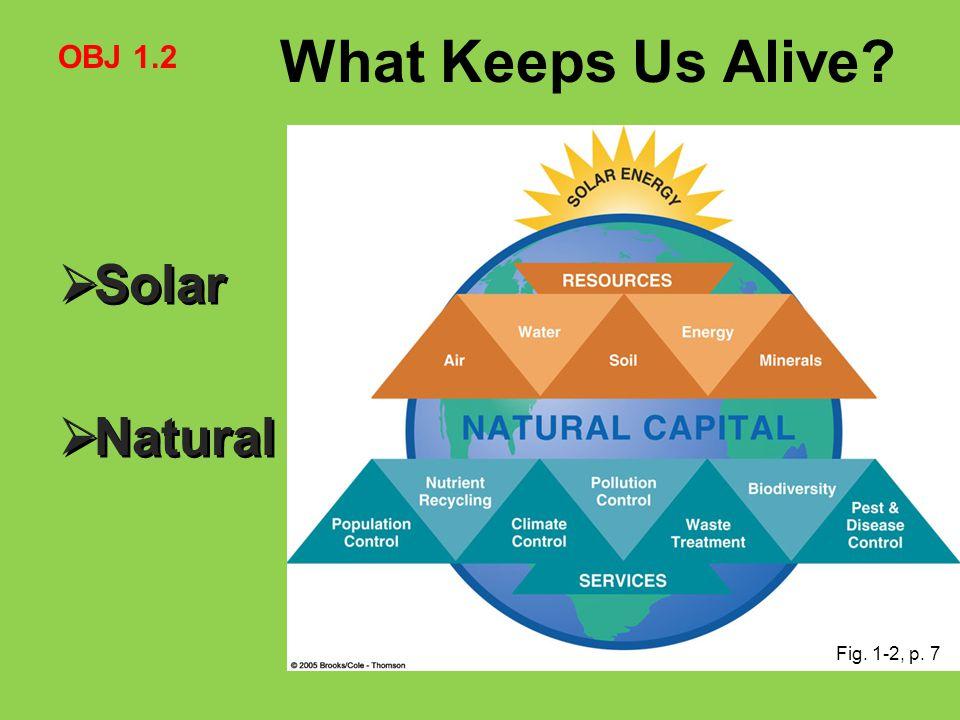 What Keeps Us Alive?  Solar  Natural  Solar  Natural Fig. 1-2, p. 7 OBJ 1.2