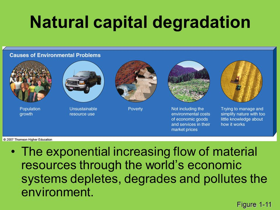 Natural capital degradation The exponential increasing flow of material resources through the world's economic systems depletes, degrades and pollutes