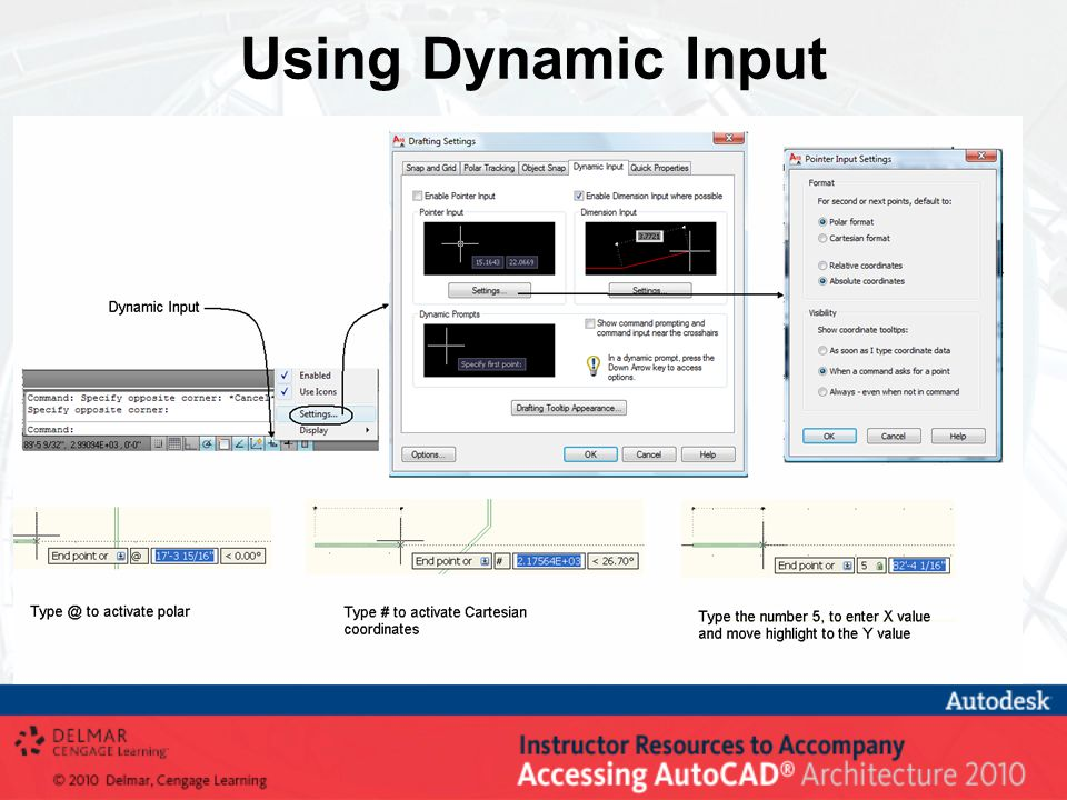 Using Dynamic Input