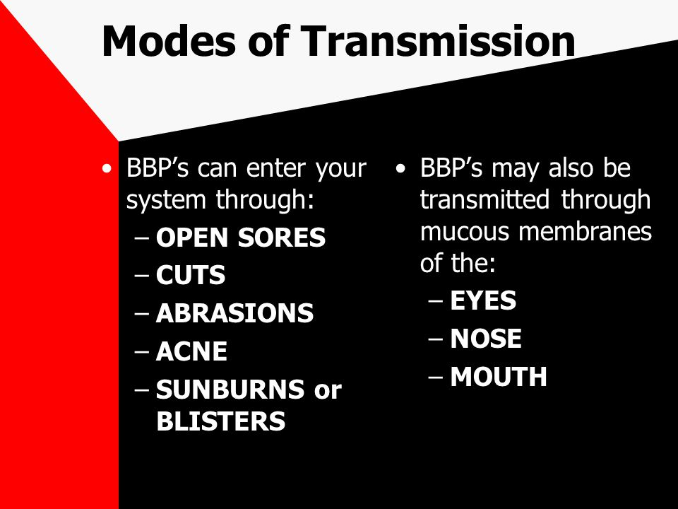 Modes of Transmission BBP's can enter your system through: –OPEN SORES –CUTS –ABRASIONS –ACNE –SUNBURNS or BLISTERS BBP's may also be transmitted thro