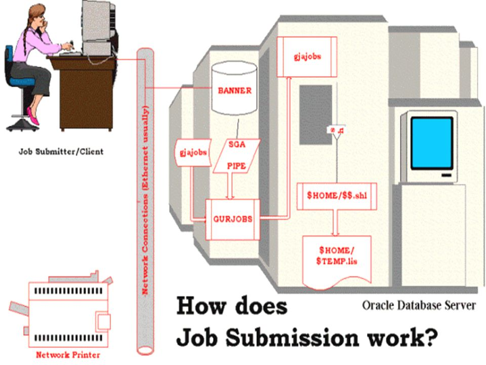 Job Submission - Process Types u There are four types of jobs that are currently supported by SCT Banner: n C - Pro*C n E - Pro*Cobol n P – Procedures (scripts) n R - Oracle Reports