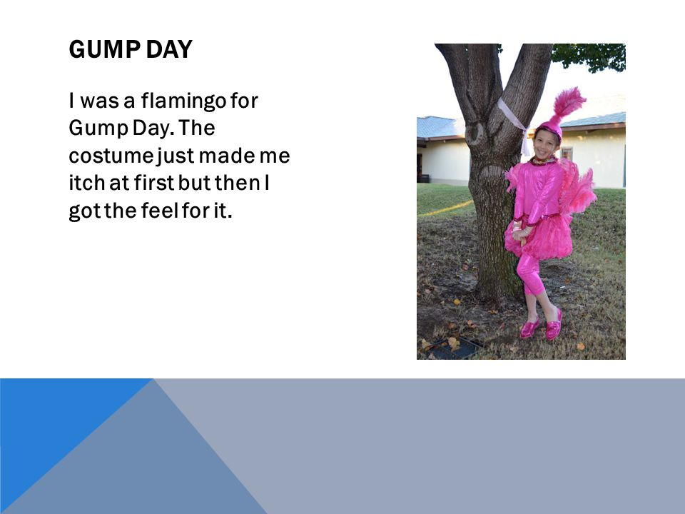I was a flamingo for Gump Day. The costume just made me itch at first but then I got the feel for it. GUMP DAY