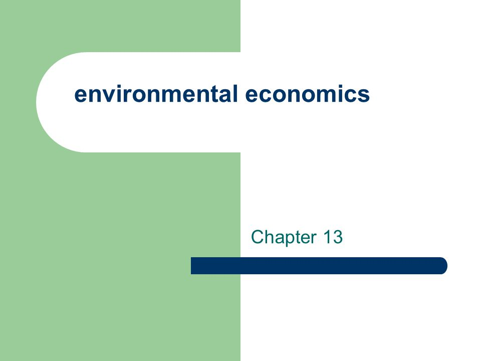 environmental economics Chapter 13