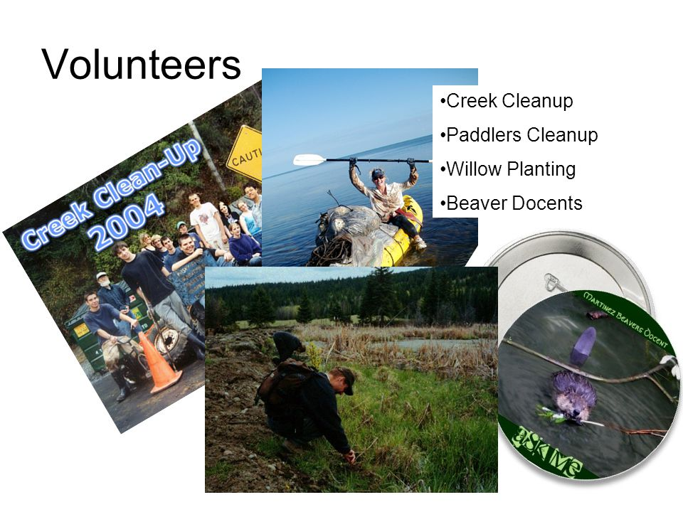 Volunteers Creek Cleanup Paddlers Cleanup Willow Planting Beaver Docents