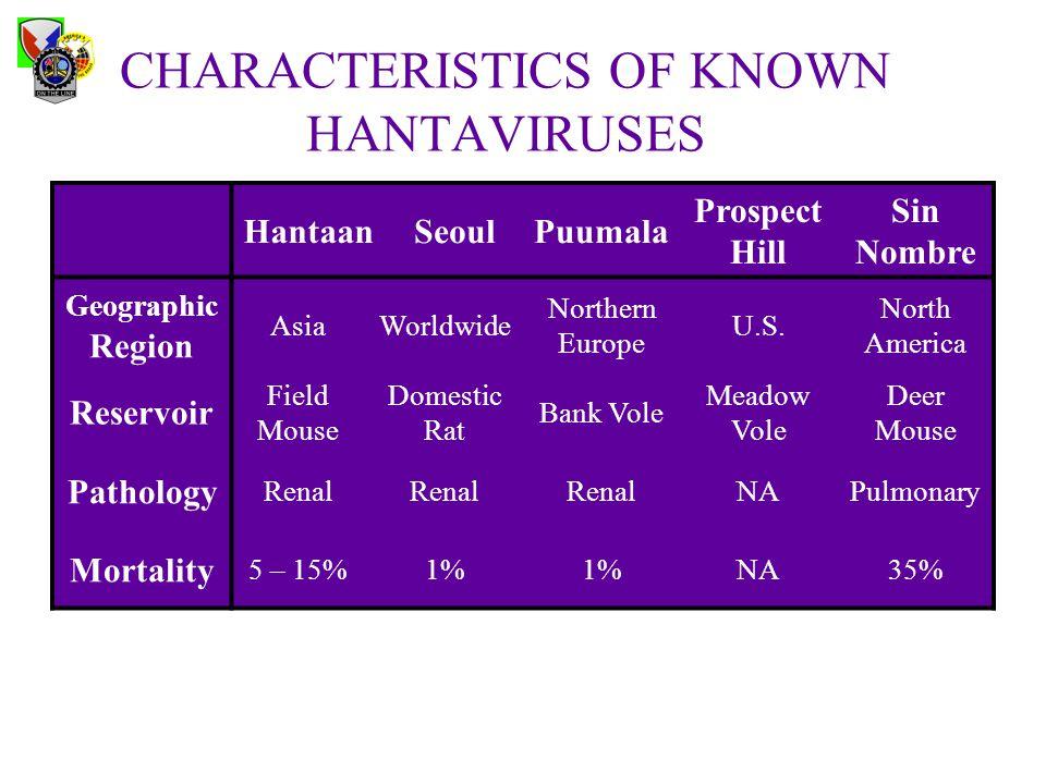 CHARACTERISTICS OF KNOWN HANTAVIRUSES HantaanSeoulPuumala Prospect Hill Sin Nombre Geographic Region AsiaWorldwide Northern Europe U.S.