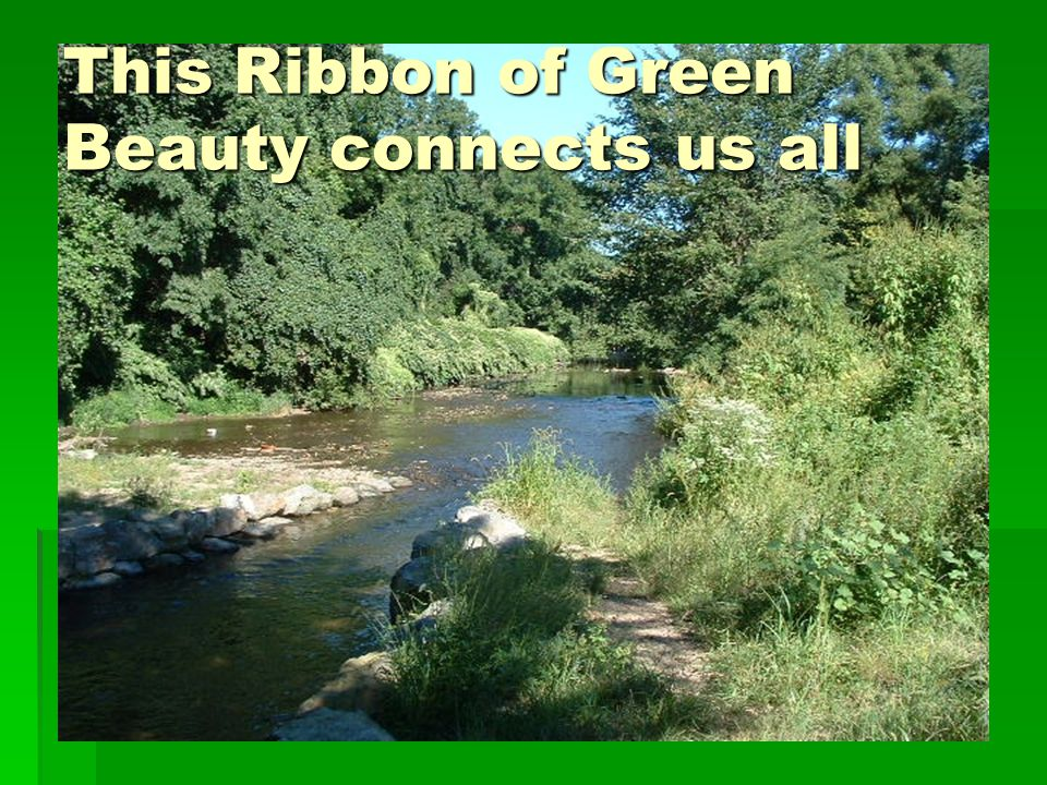 This Ribbon of Green Beauty connects us all