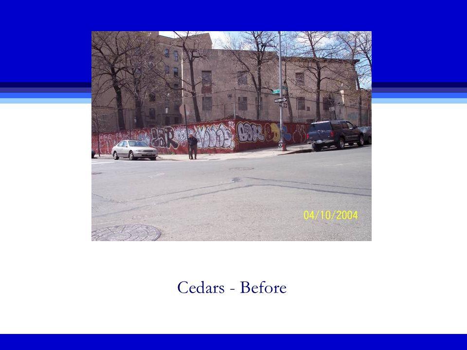 Cedars - Before