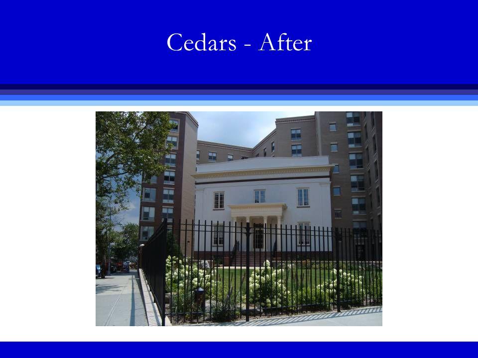 Cedars - After