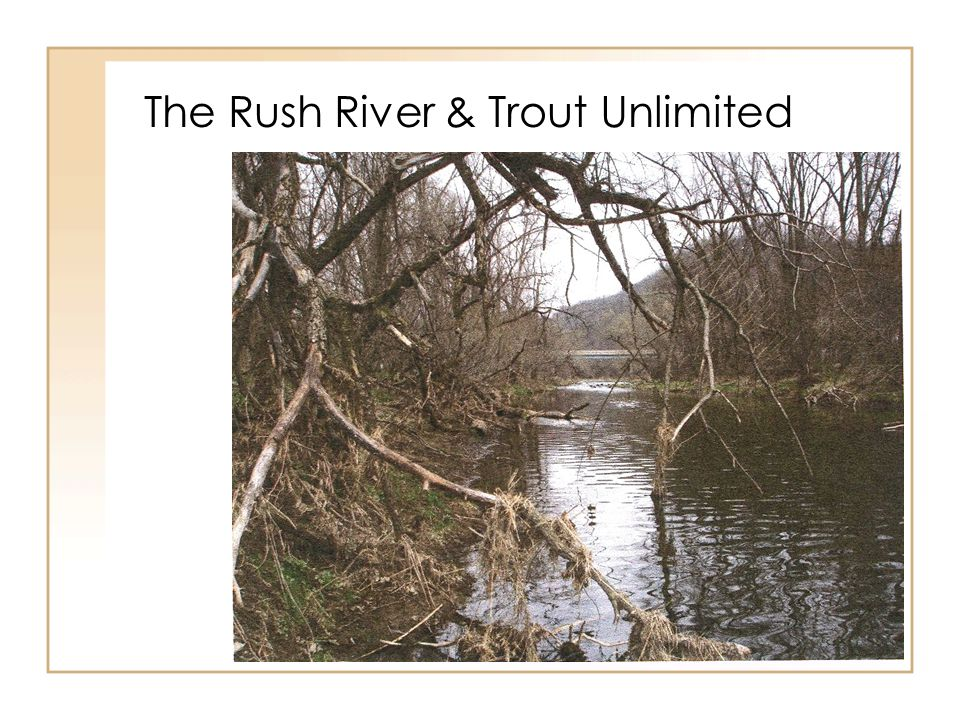 The Rush River & Trout Unlimited