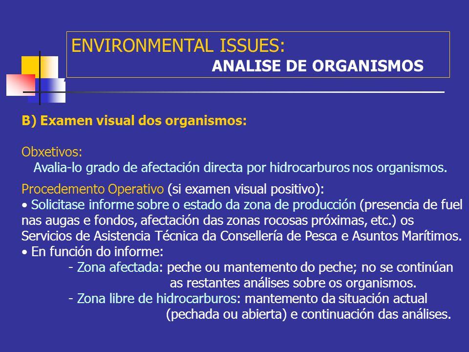 A ENVIRONMENTAL ISSUES: PROBING: Feb 20th (3 months after the disaster) Rastros de Vieira Lances de NasasLances de Miños