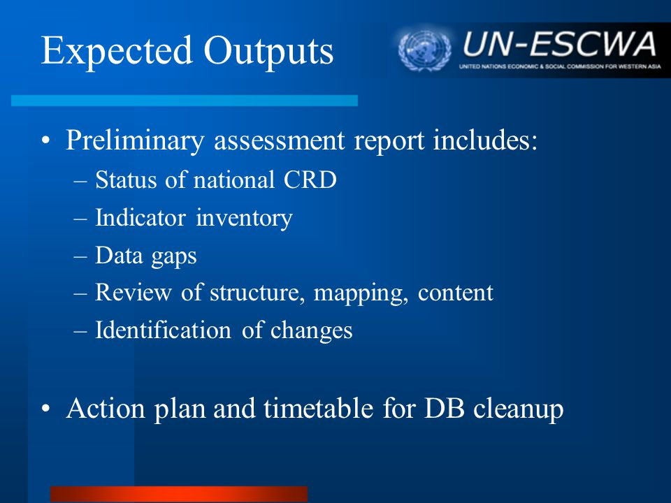 Expected Outputs Preliminary assessment report includes: –Status of national CRD –Indicator inventory –Data gaps –Review of structure, mapping, content –Identification of changes Action plan and timetable for DB cleanup