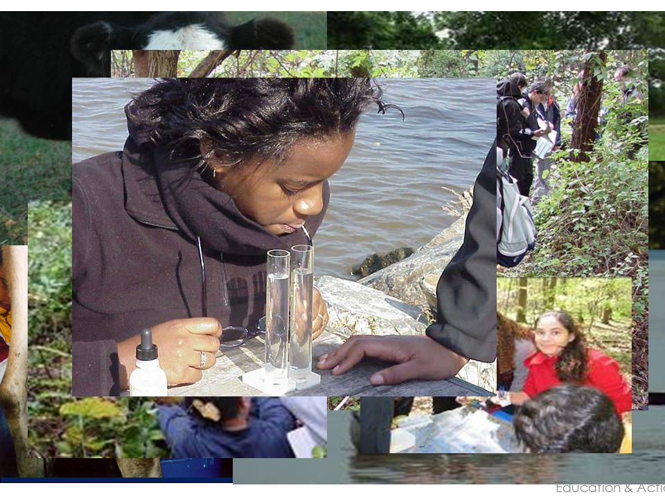 TRASH FREE BY 2013! Alice Ferguson Foundation Experience, Education & Action Education Programs