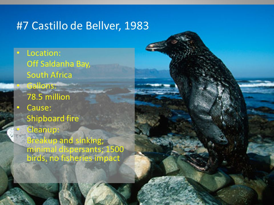 #7 Castillo de Bellver, 1983 Location: Off Saldanha Bay, South Africa Gallons: 78.5 million Cause: Shipboard fire Cleanup: Breakup and sinking; minimal dispersants; 1500 birds, no fisheries impact