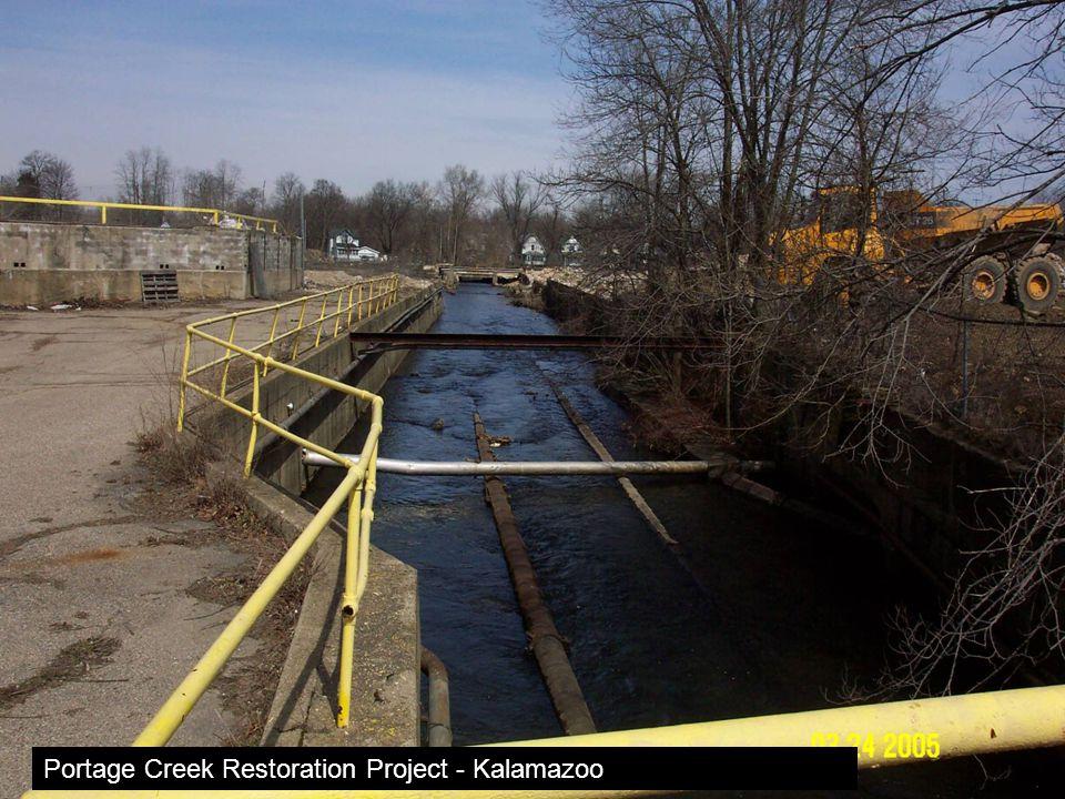 Portage Creek Restoration Project - Kalamazoo