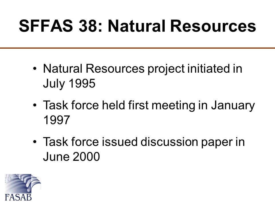 SFFAS 38: Natural Resources Natural Resources project initiated in July 1995 Task force held first meeting in January 1997 Task force issued discussion paper in June 2000