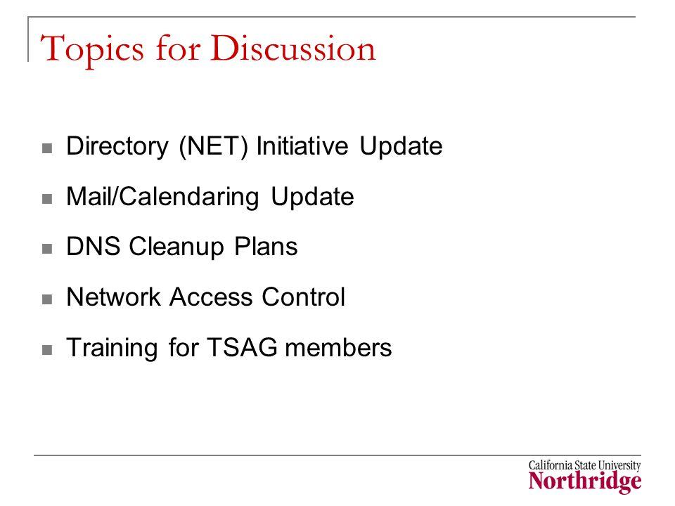 Topics for Discussion Directory (NET) Initiative Update Mail/Calendaring Update DNS Cleanup Plans Network Access Control Training for TSAG members