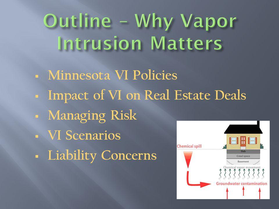  Minnesota VI Policies  Impact of VI on Real Estate Deals  Managing Risk  VI Scenarios  Liability Concerns