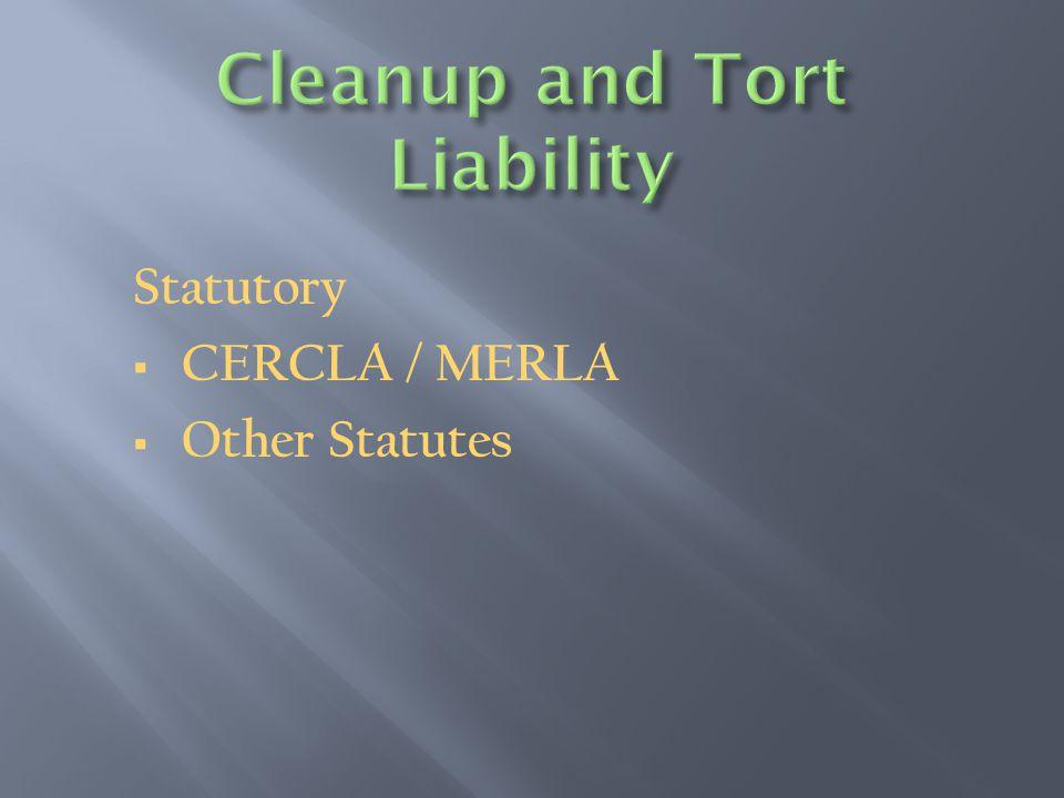 Statutory  CERCLA / MERLA  Other Statutes