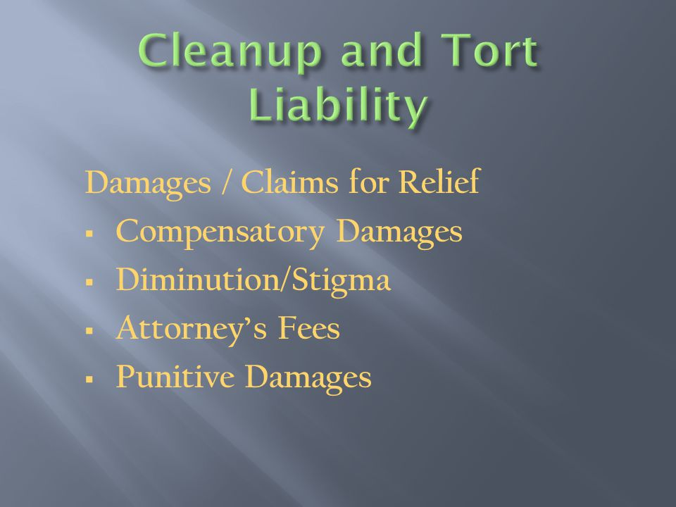 Damages / Claims for Relief  Compensatory Damages  Diminution/Stigma  Attorney's Fees  Punitive Damages