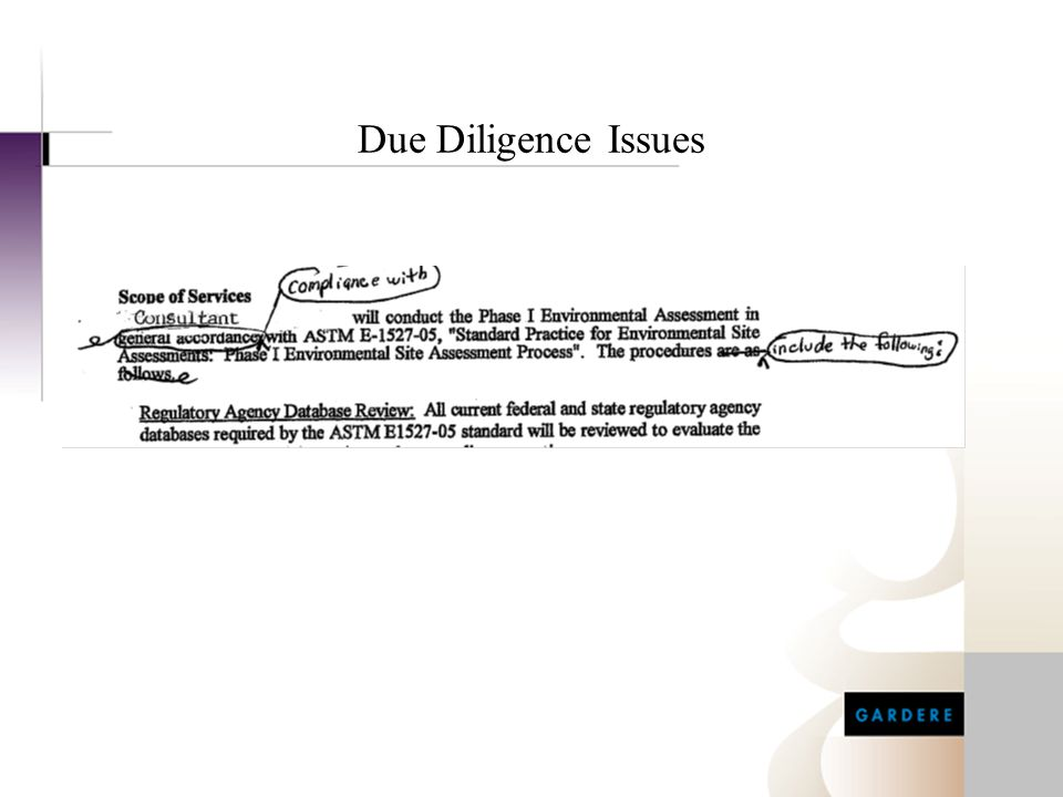 Due Diligence Issues