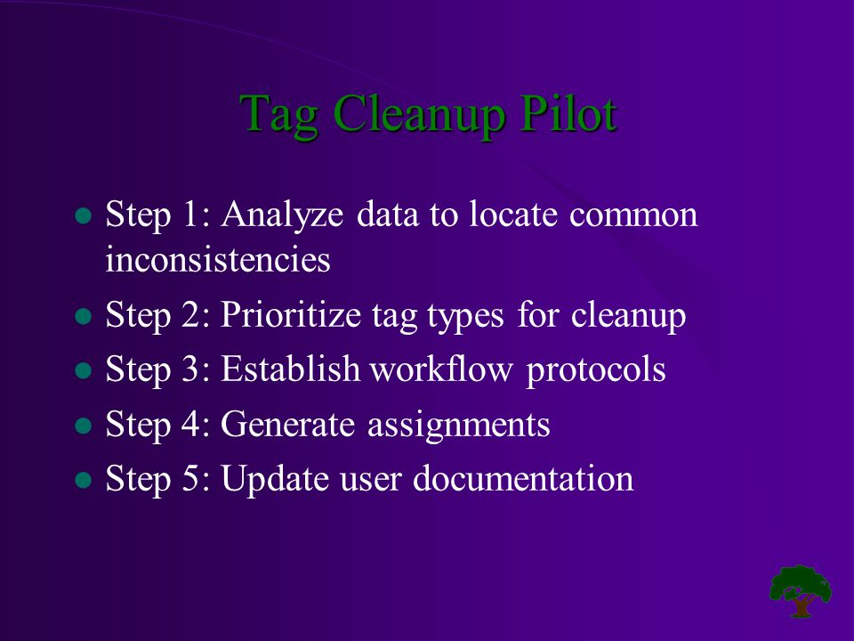 Tag Cleanup Pilot l Step 1: Analyze data to locate common inconsistencies l Step 2: Prioritize tag types for cleanup l Step 3: Establish workflow protocols l Step 4: Generate assignments l Step 5: Update user documentation