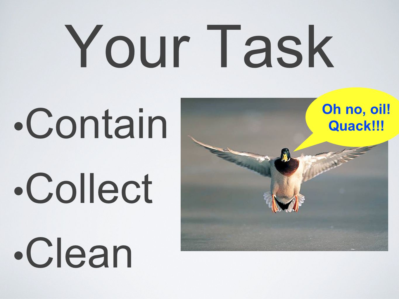 Your Task Contain Collect Clean Oh no, oil! Quack!!!
