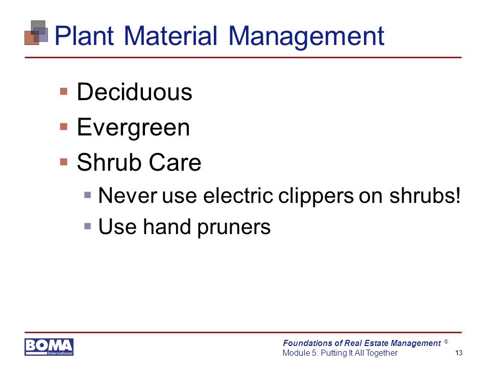 Foundations of Real Estate Management Module 5: Putting It All Together 13 ® Plant Material Management  Deciduous  Evergreen  Shrub Care  Never use electric clippers on shrubs.
