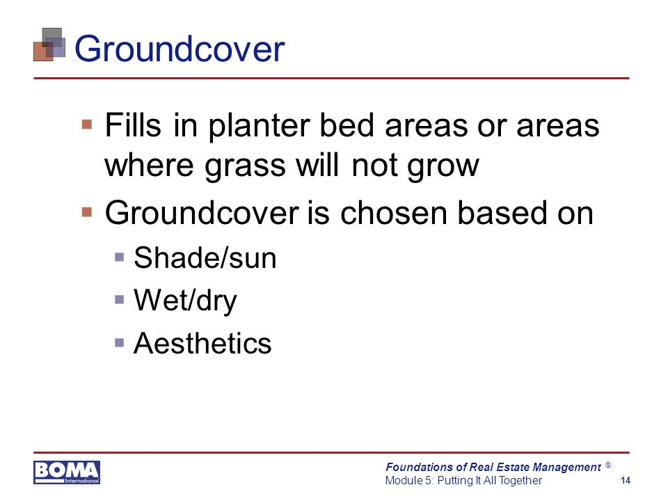 Foundations of Real Estate Management Module 5: Putting It All Together 14 ® Groundcover  Fills in planter bed areas or areas where grass will not grow  Groundcover is chosen based on  Shade/sun  Wet/dry  Aesthetics