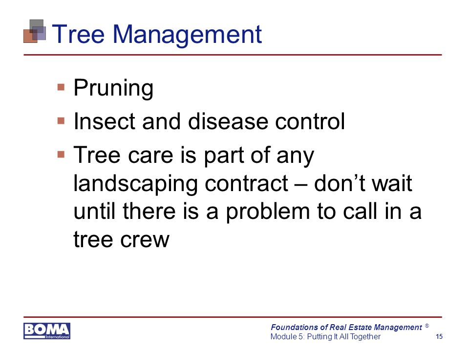 Foundations of Real Estate Management Module 5: Putting It All Together 15 ® Tree Management  Pruning  Insect and disease control  Tree care is part of any landscaping contract – don't wait until there is a problem to call in a tree crew