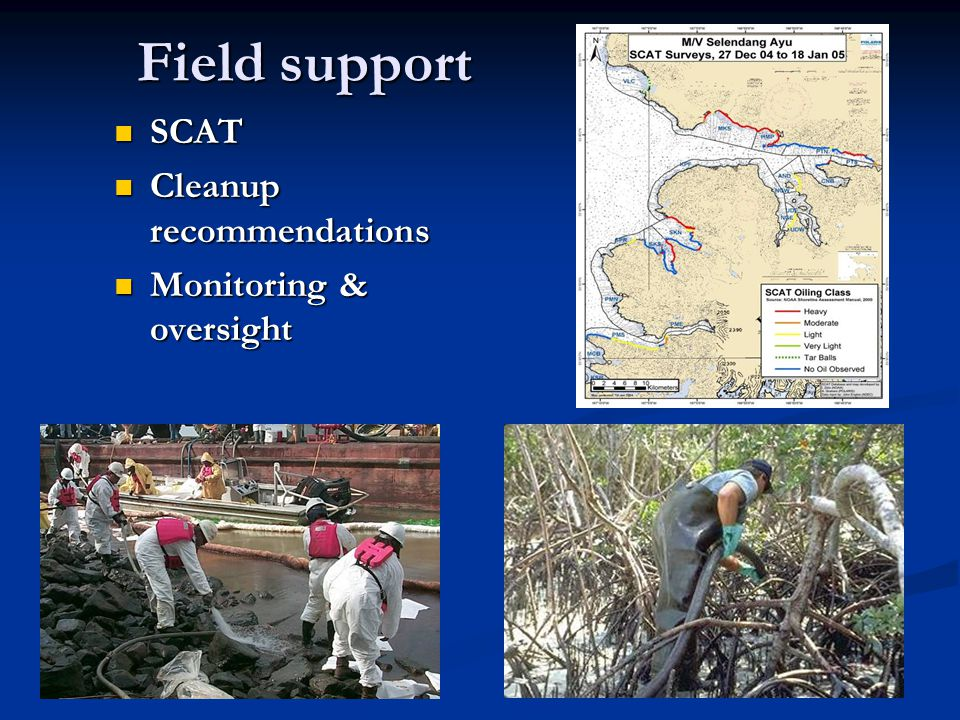 Field support SCAT SCAT Cleanup recommendations Cleanup recommendations Monitoring & oversight Monitoring & oversight